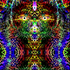 Avatar for carloxz