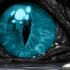 Avatar for Talon556