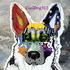 Avatar di CoolDog312
