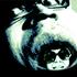 Avatar for Azure-Throated