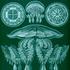 Avatar di Cistic_Oken