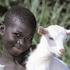 Avatar for goatfarmer03