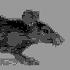Avatar de pixel-rat