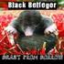 Awatar dla black_belfegor
