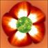 Avatar für tifg45