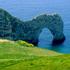 Avatar for Dorset-1234