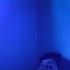 Avatar for sleepofthestage