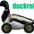 Avatar de duckroller