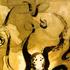 Avatar for odanhurr