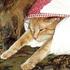 Avatar for catsparky