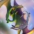 Avatar di LupusTR3