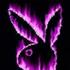 Avatar de dande1996
