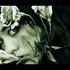 Avatar de sylwa
