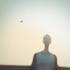 Avatar de wicaq
