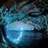 Avatar di chillwavecentra