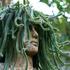 Avatar for monolithicsound