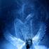 Avatar for SpiritDreaming