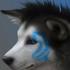 Avatar for VOLKGS27
