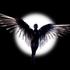 Avatar for Leinad_dallyne