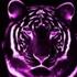 Avatar for purpletigerlove