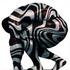 Avatar for SafariCreation