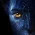Avatar for Deeramfm