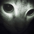 Avatar for spookythecat