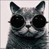 Аватар для Fateful89