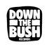 Avatar for downthebush