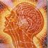 Avatar for Consciousnez