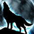 Avatar de darkbluewolf