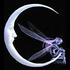 Avatar de hopetaylor
