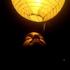 Avatar for Solluan__6