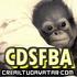 Avatar for CDSFBA