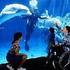 Avatar für kdc4real
