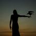 Avatar for ravenrock