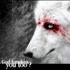 Avatar for whiteFwolf