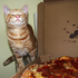 Avatar for pizzadaycat