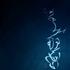 Avatar for mrkk9