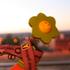 Avatar de jmaicasbeat
