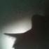 Avatar di mouse1407