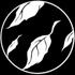 Avatar for reiverinthebox