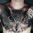 Avatar for tatuator