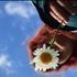 Avatar for daisysmells