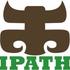 Avatar for IpathNorway