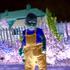 Avatar for MrJacobSladder