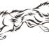 Avatar for broughtonwolf