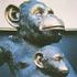 Avatar for monkeysRus999
