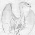 Avatar for pswinn