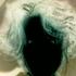 Avatar for Darkworks